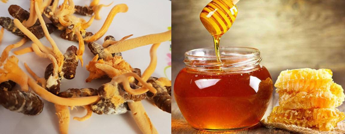 cách ăn đông trùng hạ thảo khô, đông trùng hạ thảo sấy khô , đông trùng hạ thảo khô có tác dụng gì , đông trùng hạ thảo khô ngâm mật ong , đông trùng hạ thảo khô, đông trùng hạ thảo mật ong, đông trùng hạ thảo khô ngâm rượu, đông trùng hạ thảo pha trà